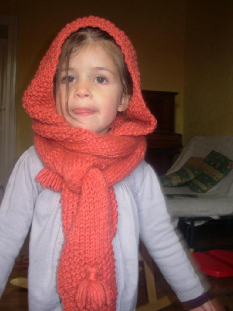affichage modèle tricot gratuit echarpe capuche 03c6c008305