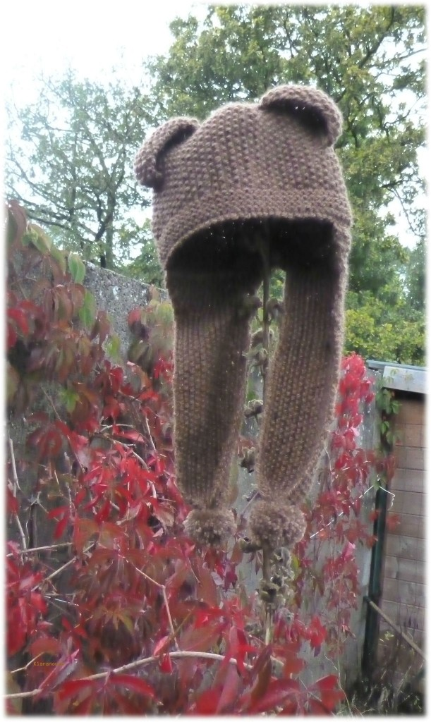 modèle tricot bonnet avec oreilles