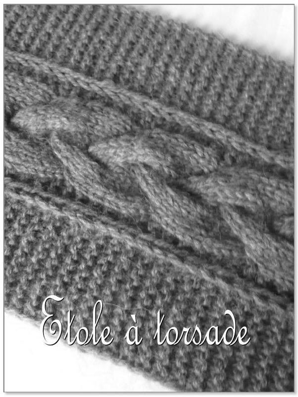 modele de torsade tricot