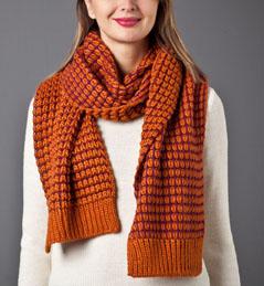 modele tricot echarpe bicolore