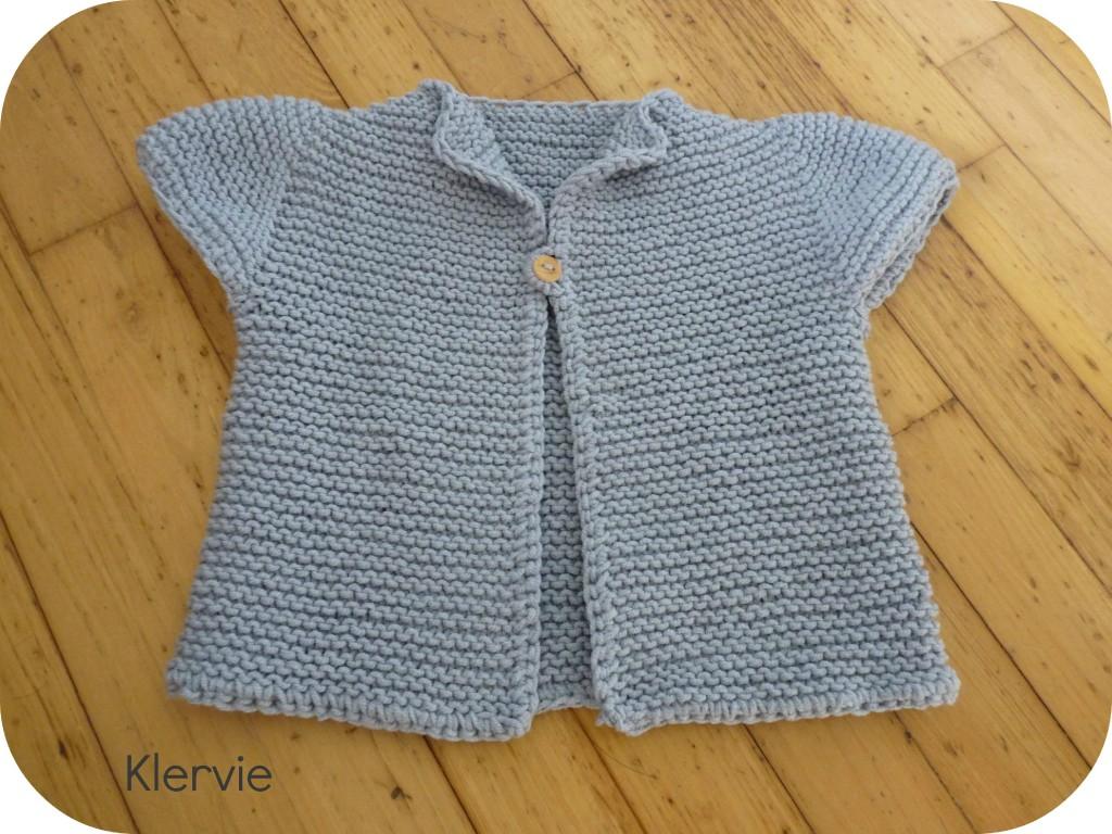patron tricot 2013