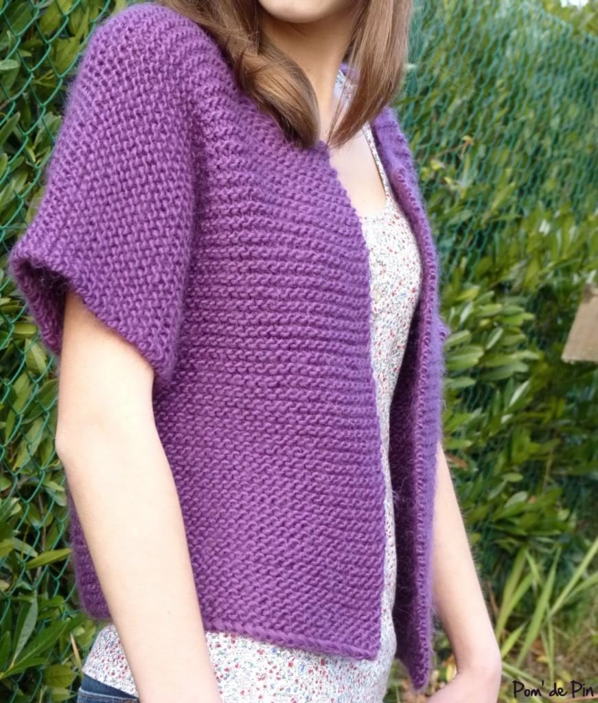 modèle tricot aig 7