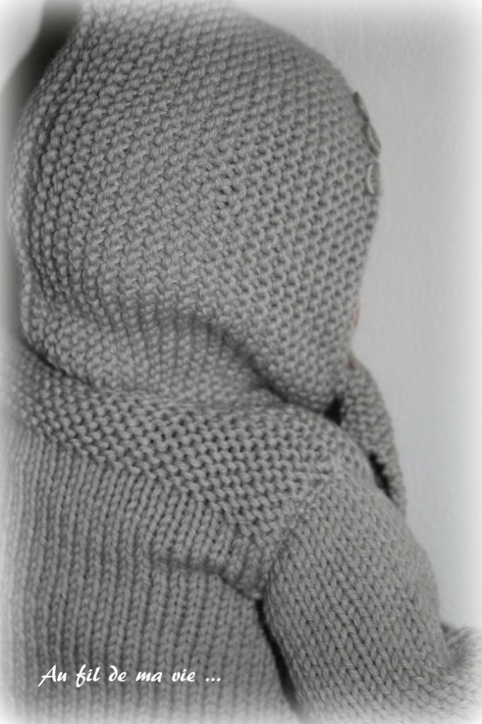 modèle tricot partner 6