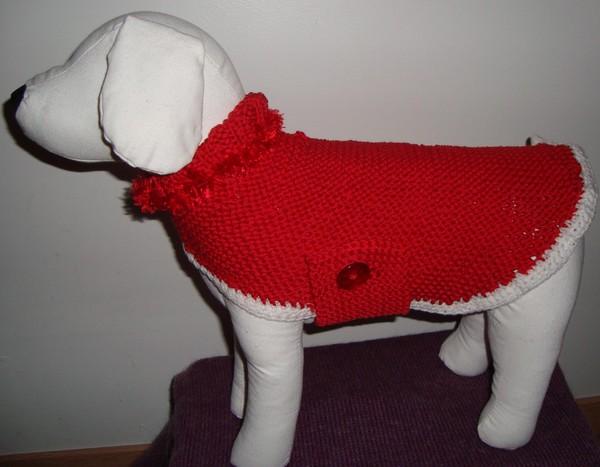 manteau chien tricot