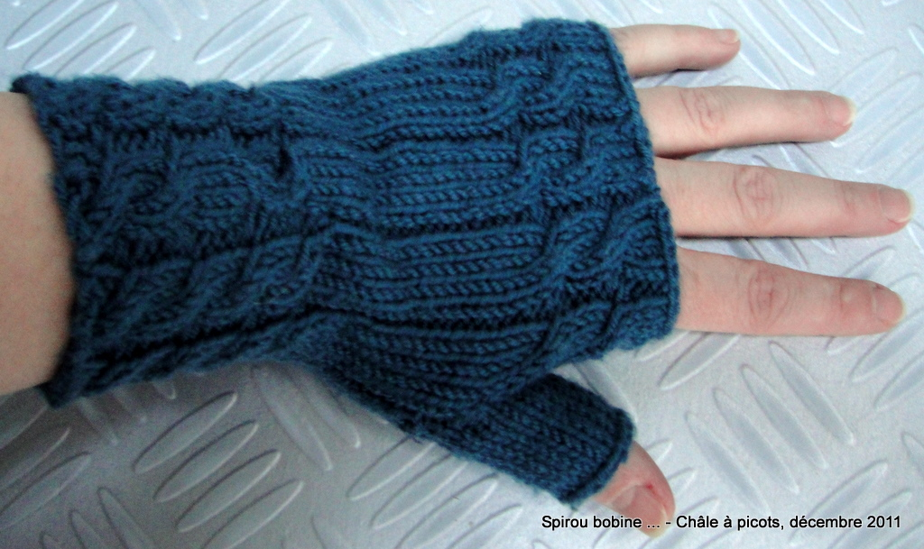 modèle mitaine tricot 2 aiguilles