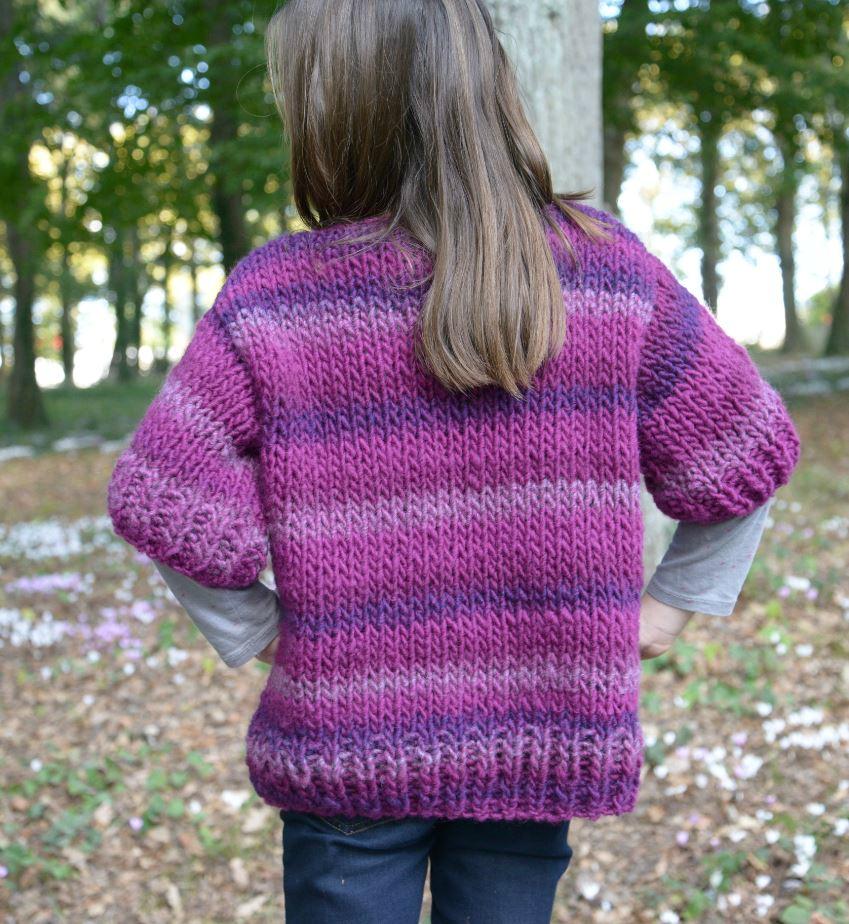 modèle tricot 3 pelotes