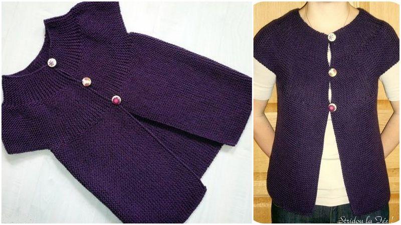 modèle tricot gilet de berger