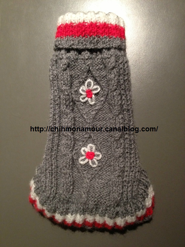 patron tricot pull chien