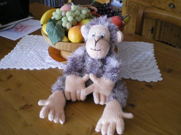 patron tricot singe