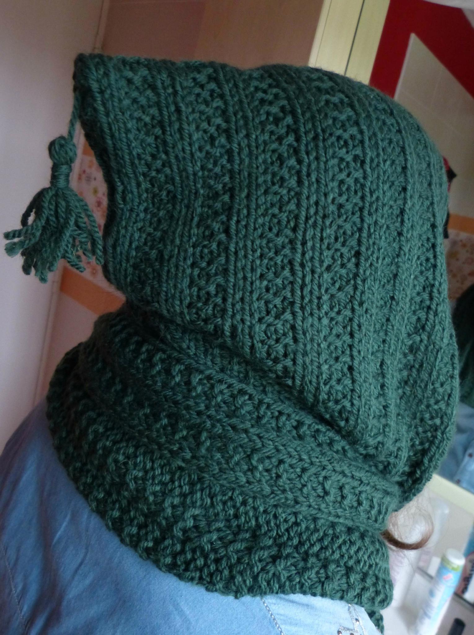 modèle tricot echarpe capuche gratuit c77fa4729d6