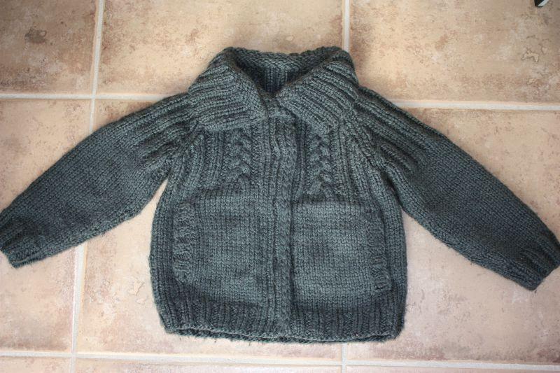 modèle gilet tricot bergere de france
