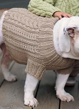 tricoter vetement pour chien